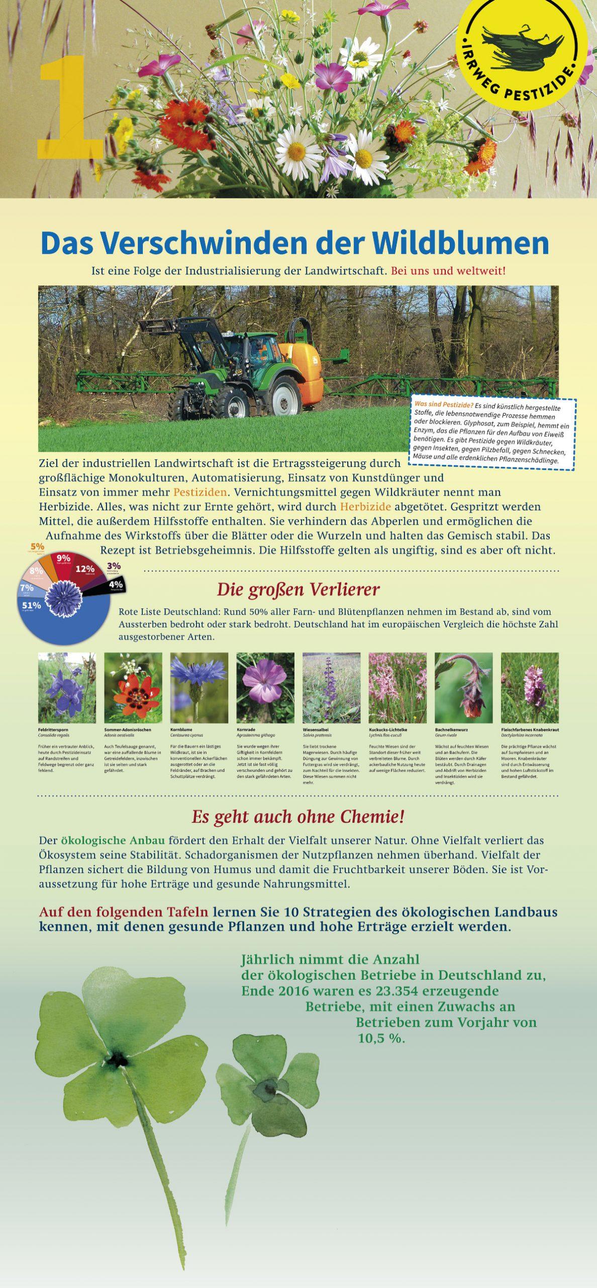 Irrweg Pestizide Das Verschwinden der Wildblüten